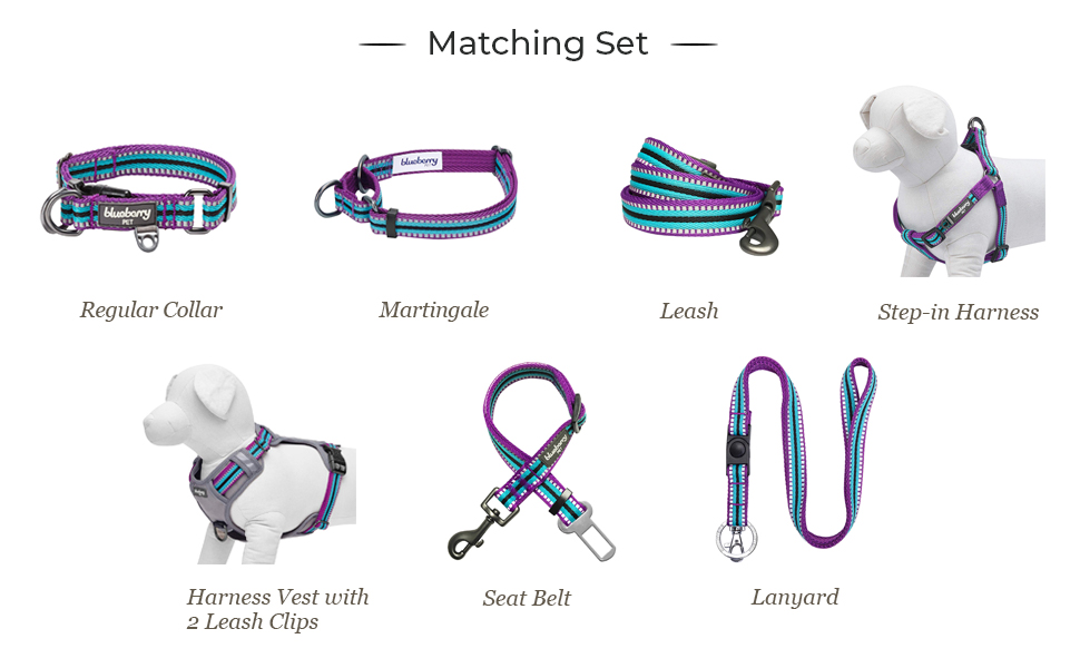 multi-colored stripe collection - 5