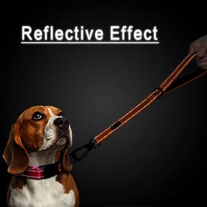 10 inch short dog leash