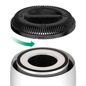 Replaceable filter