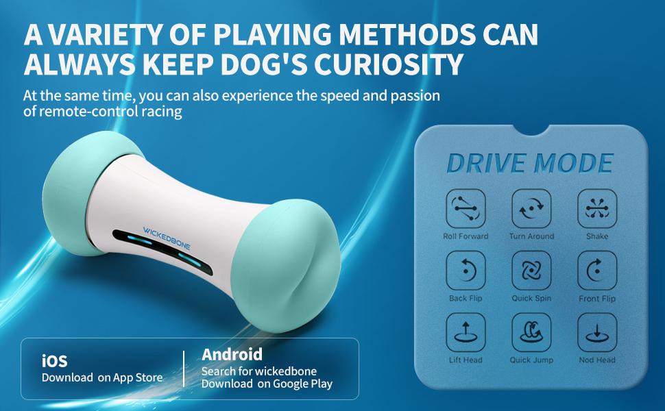smart dog bone