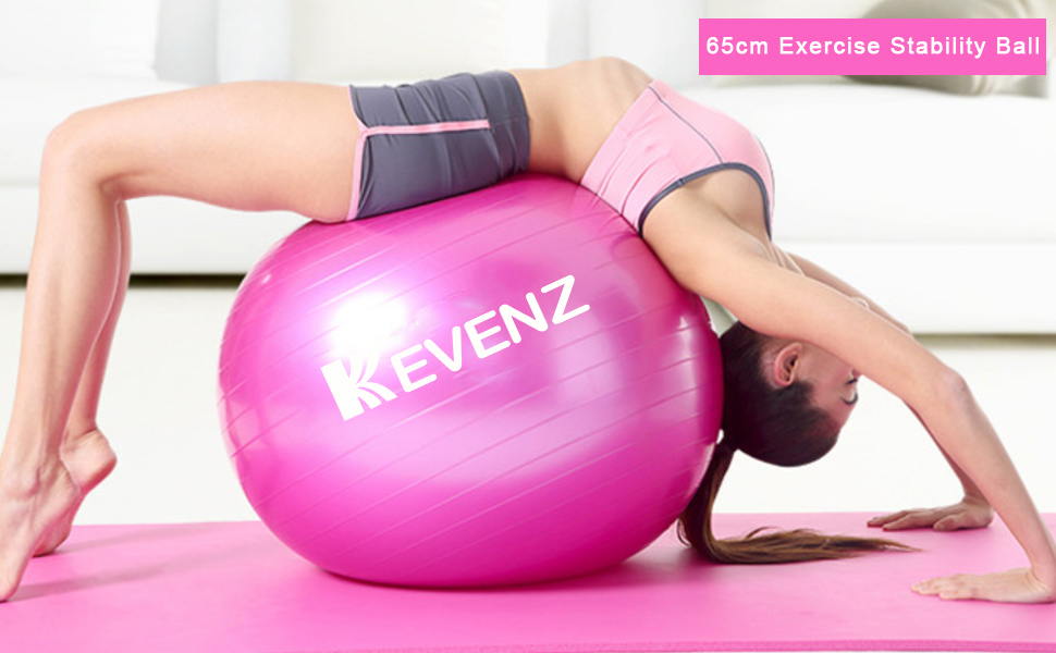 2000lbs 65cm Static Strength Exercise Stability Ball with Pump