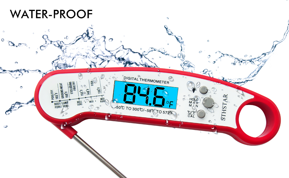 Thermometer for meat i