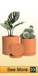 3pcs assorted size cylinder clay pot