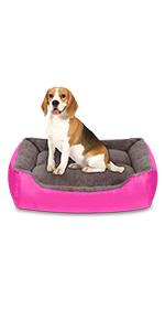 large dog beds