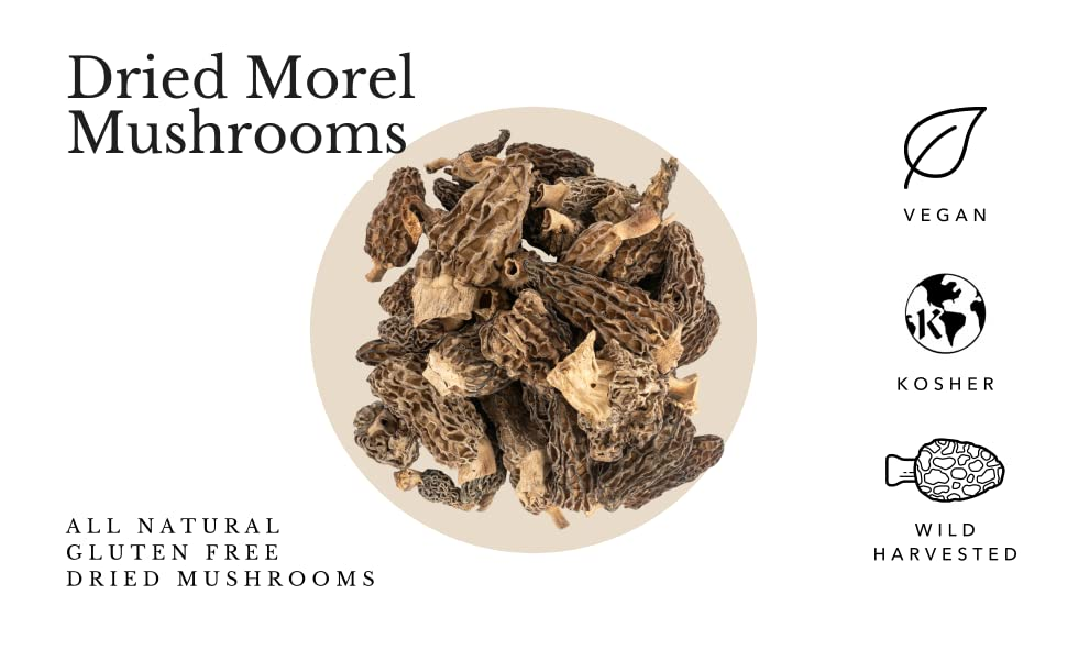 Dried Morel Mushrooms all natural gluten free wild harvested