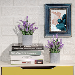 lavender potted plant outdoor table centerpiece kitchen decorations above cabinets window sill