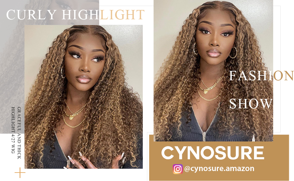 highlight wig human hair lace front