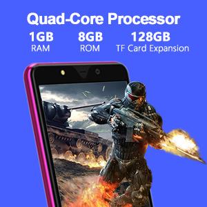Dual SIM Unlocked Cell Phone