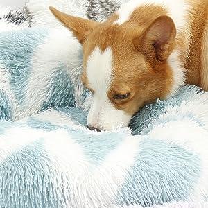 Lacher Pet Bed