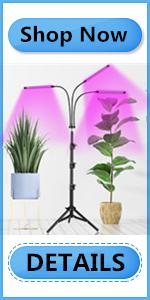 red blue plant lights