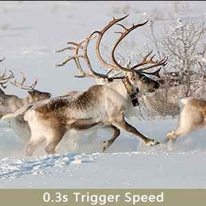 trail camera with fast trigger time