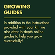 rowing guides - additional instructions to help grow successfully