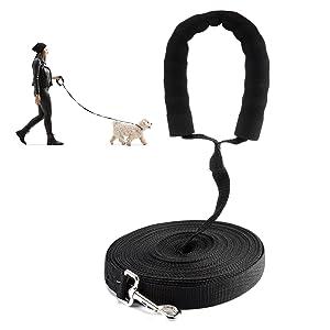 training dog leash
