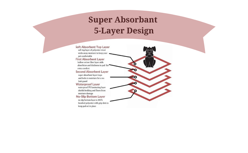 Super Absorbant 5-Layer Design