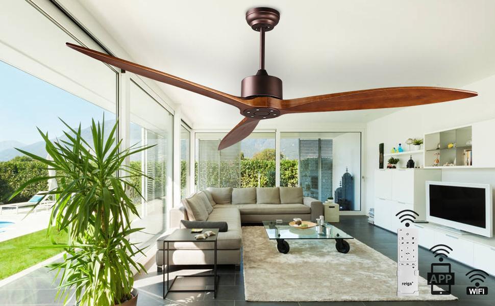 ov ceiling fan with light