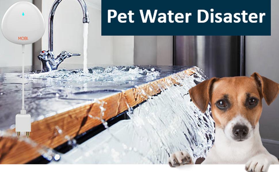 water uage monitor, smart monitor, water alert, water sensor no hub, water flow meter, wifi sensor
