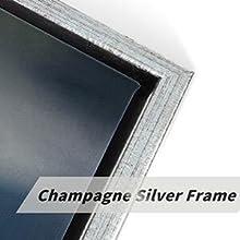 Champagne Silver Frame details
