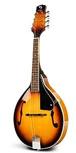 mandolin right handed