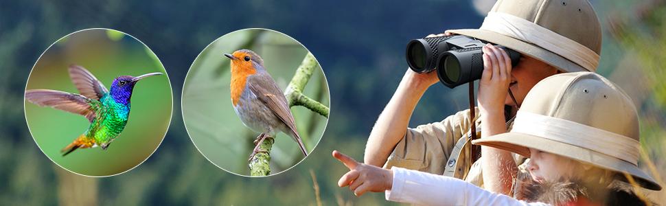 binoculars concert