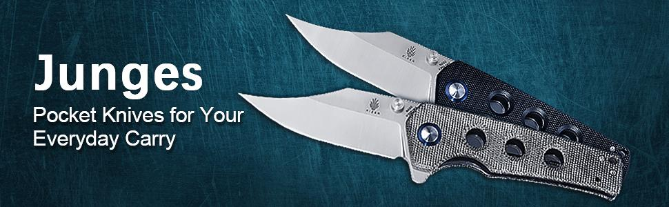 Kizer Junges Folding Knife V3551N3