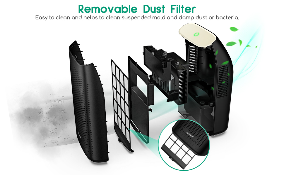removable dust filter