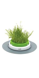 Senses Grass Planter