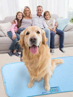 dog cooling mat with Arc-Chill cooling technology