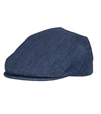 Levi ivy hat