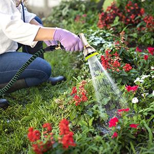 Watering Flowers, Crops