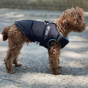 small dog Winter vest