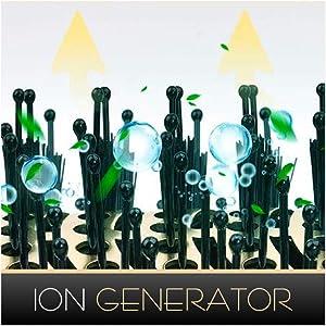 ion generator