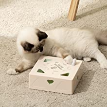 Mewoofun Interactive Cat Toys 600-1