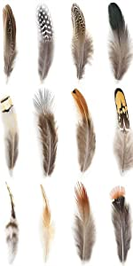 360pcs 12 Styled Natural Feathers Assorted Mixed Feathers for Jewelry and Dream Catcher Crafts…