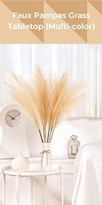 Multi-Color White Background