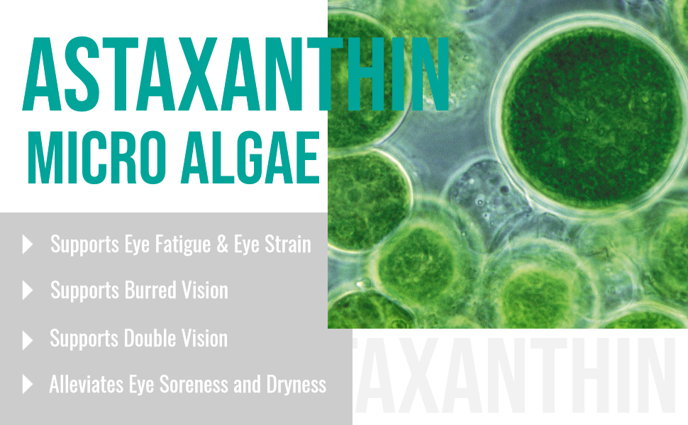 astaxanthin computer vision syndrome eye supplement eye health support eye care red eye low vision