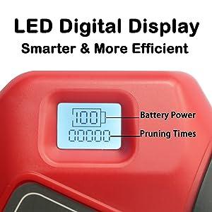 LED digital display