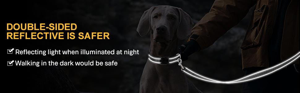 5FT dog lead