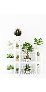 Indoor White Plant Shelf