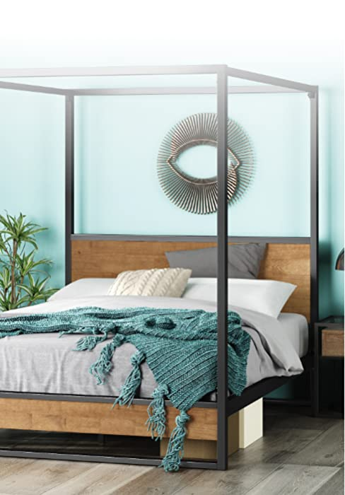 Suzanne Canopy Platform Bed Frame