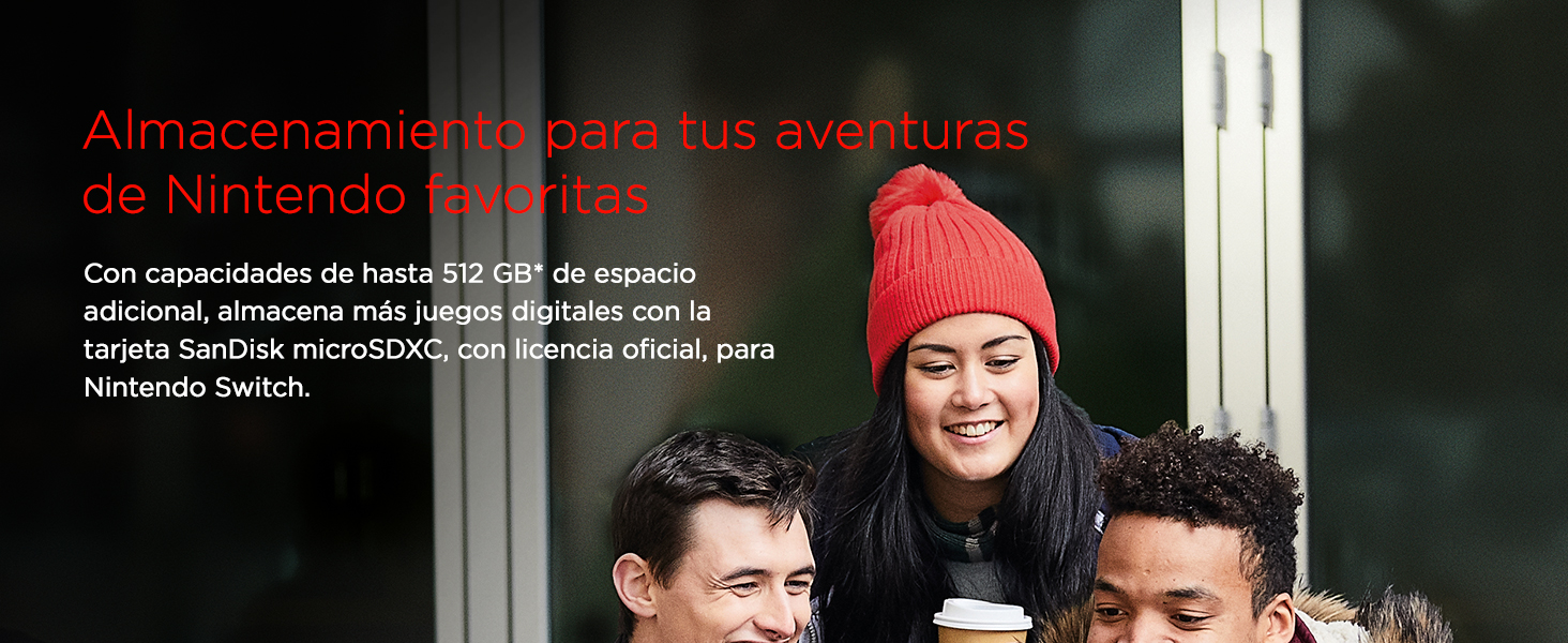 SanDisk, Nintendo, mircoSDXC