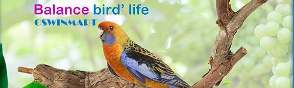 2pcs Bird Perches