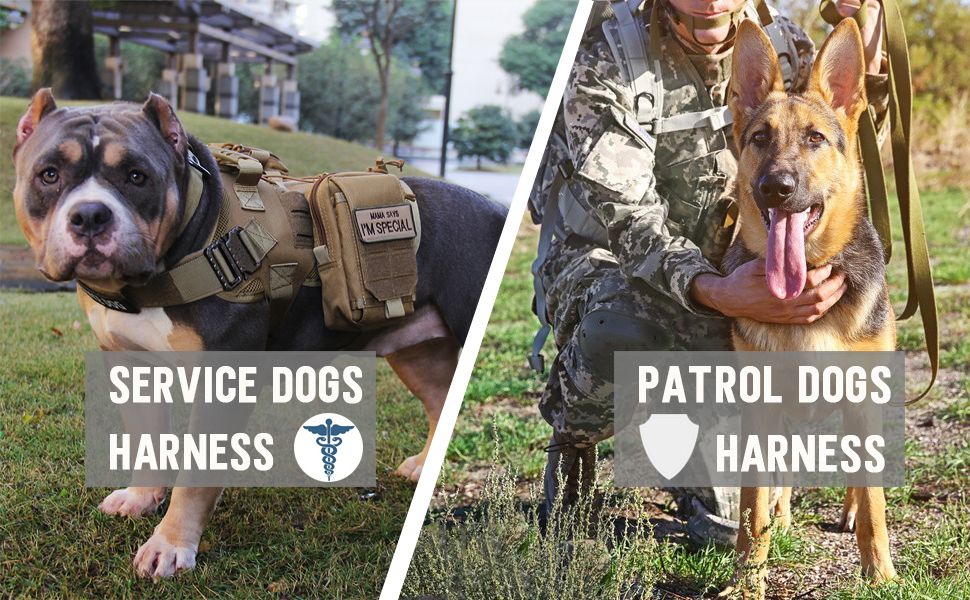 dog tactical harness