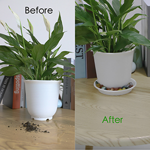 before use tray after use tray