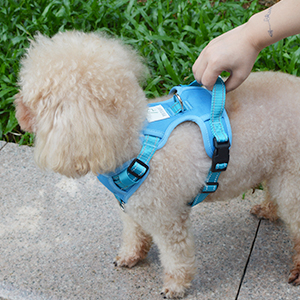 dog harness with control