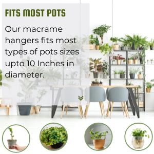 Plant Hangers for Scandi Design