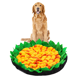 For Large Dogs