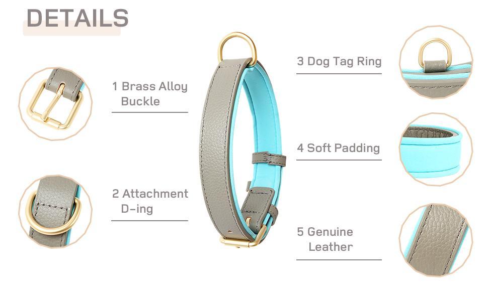 Dog Collar Details