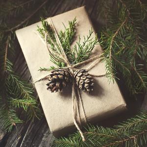 parcel sustainability pinecones