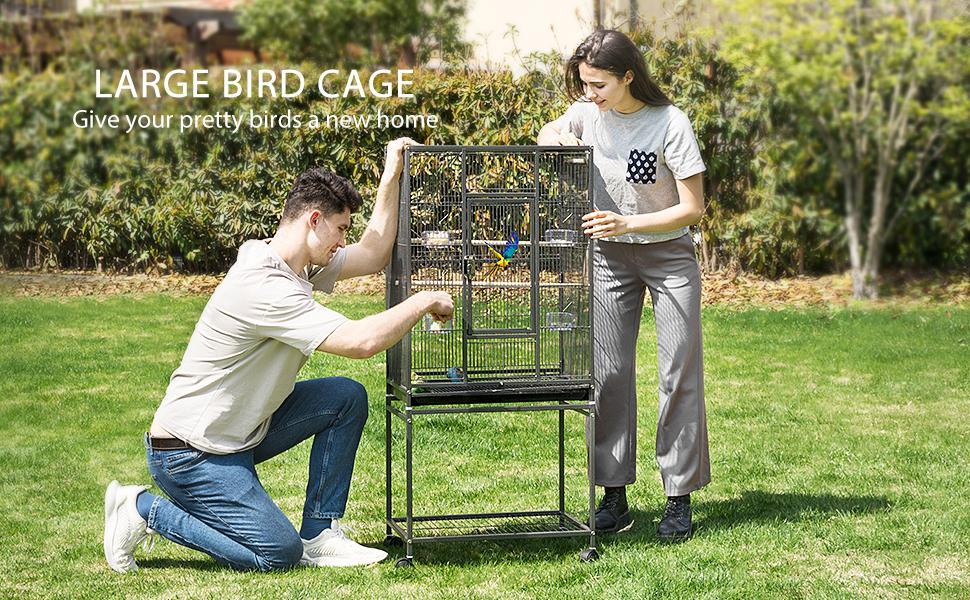 bird cage banner