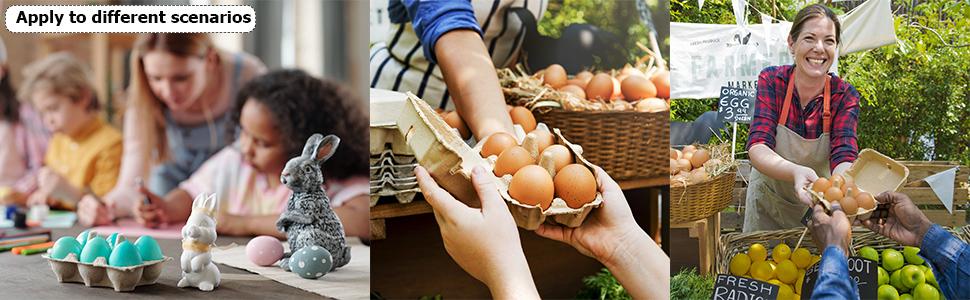 Farm Egg Carton
